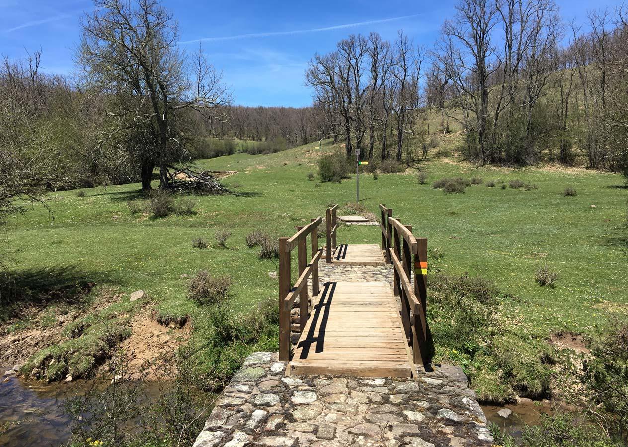 Foto de un sendero y un puente