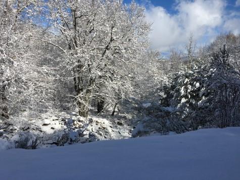 Sierra Cebollera nevada